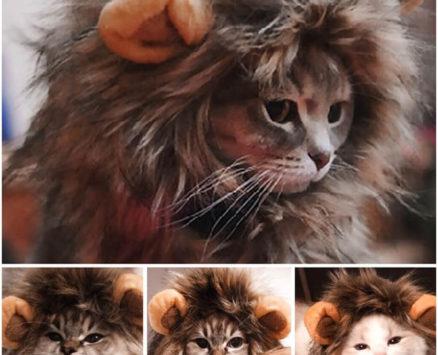 Cute Lion Mane Costume for Cat